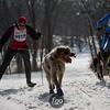 CS7G0289-Chuck & Don's Skijoring Loppet-Saturday-cr