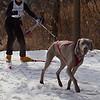 CS7G0273-Chuck & Don's Skijoring Loppet-Saturday-cr