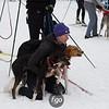 CS7G0217A- Skijoring-Sunday