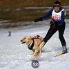 CS7G0337-Chuck & Don's Skijoring Loppet-Saturday-cr