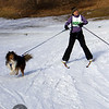 CS7G0353-Chuck & Don's Skijoring Loppet-Saturday-cr