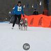 IMG_0247- Skijoring-Sunday