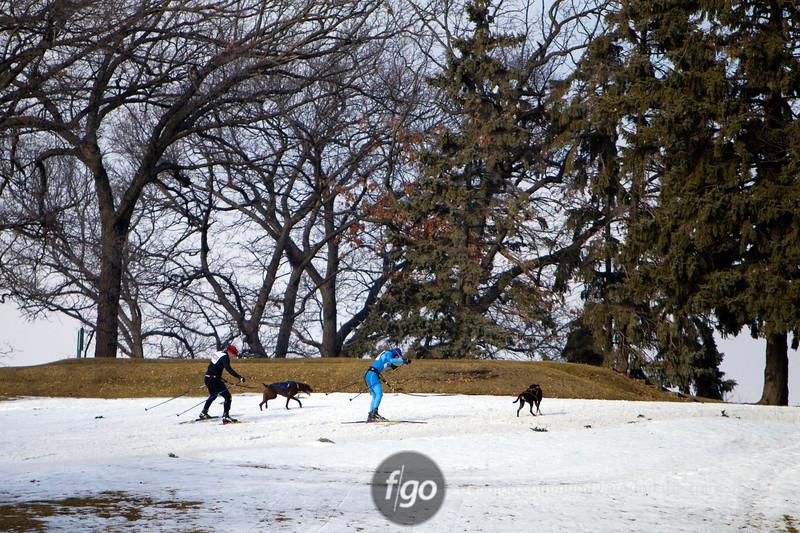 CS7G0340-Chuck & Don's Skijoring Loppet-Saturday-cr