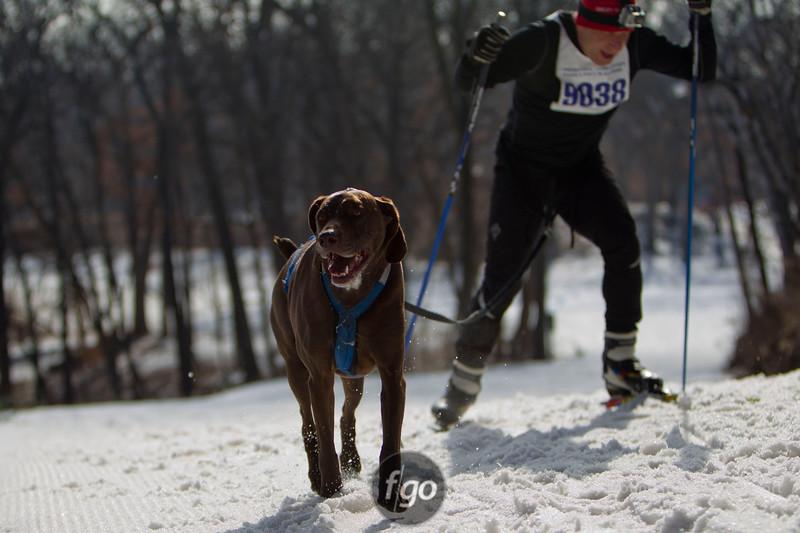 CS7G0301-Chuck & Don's Skijoring Loppet-Saturday-cr