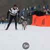 IMG_0194- Skijoring-Sunday
