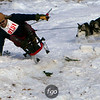 CS7G0342-Chuck & Don's Skijoring Loppet-Saturday-cr