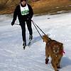 CS7G0368-Chuck & Don's Skijoring Loppet-Saturday-cr