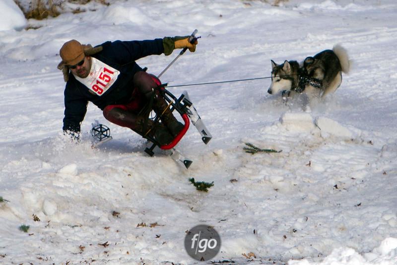 CS7G0343-Chuck & Don's Skijoring Loppet-Saturday-cr