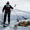 CS7G0375-Chuck & Don's Skijoring Loppet-Saturday-cr