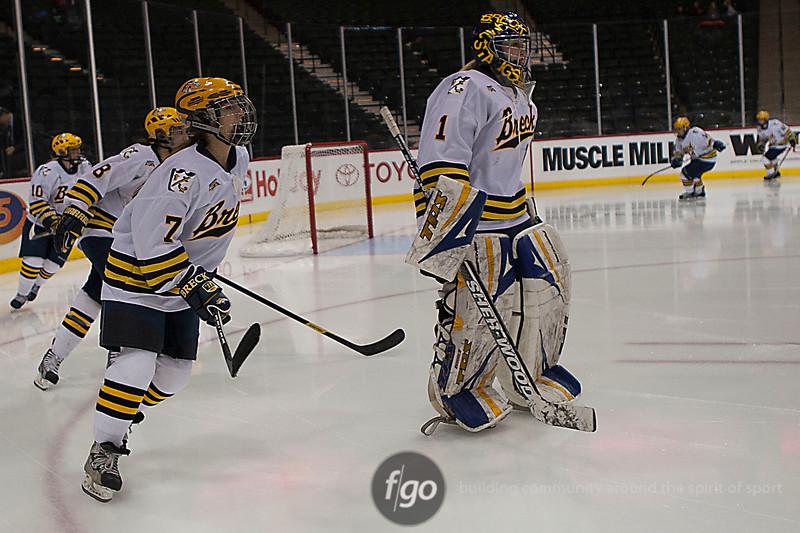 20120222-Chisago City v Breck - State Quarterfinal Girls Hockey by f-go - 1r3x0346cr