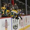 20120222 0 Chisago City v Breck - State Quarterfinal Girls Hockey by f-go - CS7G0514cr