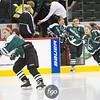 20120223 Mounds View v Edina - State Quarterfinal Girls Hockey by f-go - CS7G0010cr