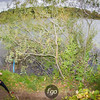 Surly Trail Loppet-0105