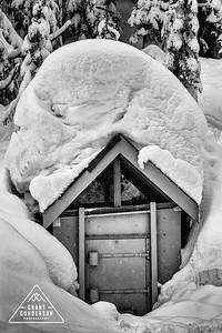 Mt. Baker Hut