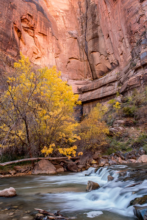 Autumn Hike_Zion National Park_Utah_photo by Gabe DeWitt_October 31, 2013-48