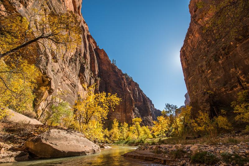 Autumn Hike_Zion National Park_Utah_photo by Gabe DeWitt_October 31, 2013-15