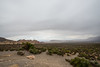 Red Rocks_Nevada_photo by Gabe DeWitt_May 09, 2013-25