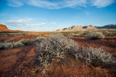 Valley-of-Fire-Nevada-photo-by-Gabe-DeWitt-23