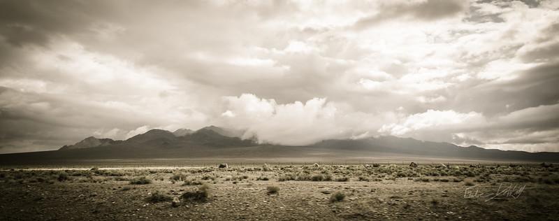 Nevada_Roadside_photo by Gabe DeWitt_May 08, 2013-33