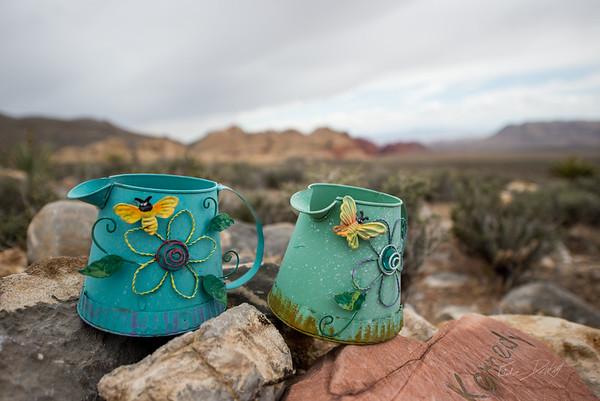 Red Rocks_Nevada_photo by Gabe DeWitt_May 09, 2013-73