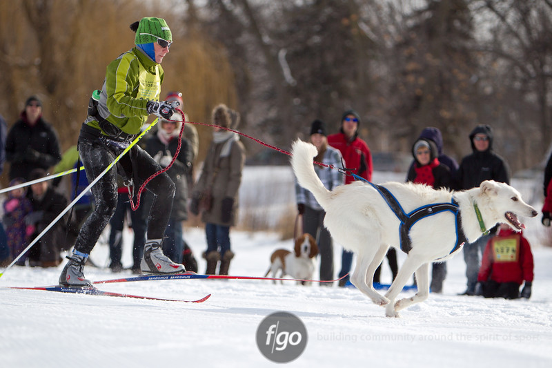 20130202 - 2013 Loppet-Chuck and Don's Skijoring-0242