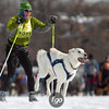 20130202 - 2013 Loppet-Chuck and Don's Skijoring-0339