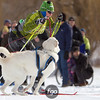 20130202 - 2013 Loppet-Chuck and Don's Skijoring-0240