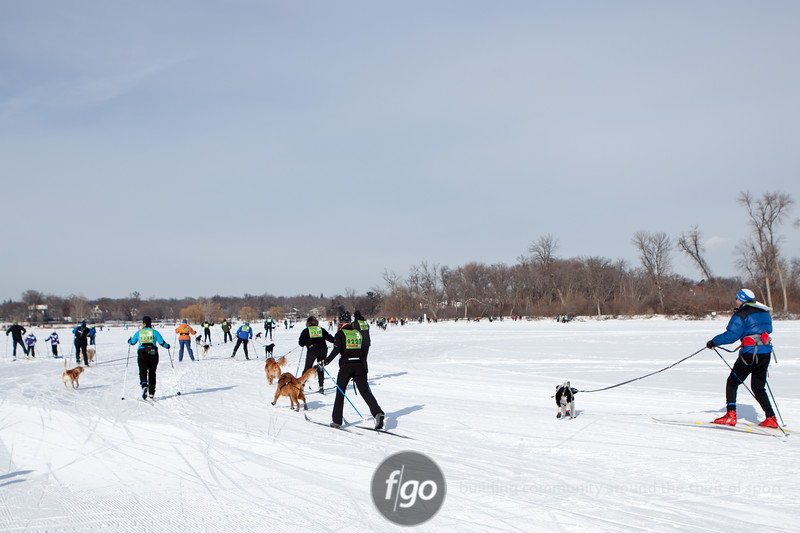 20130202 - 2013 Loppet-Chuck and Don's Skijoring-9960