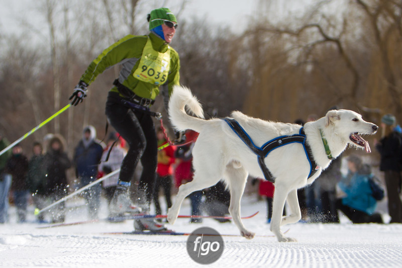 20130202 - 2013 Loppet-Chuck and Don's Skijoring-0346