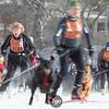 20130202 - 2013 Loppet-Chuck and Don's Skijoring-4458