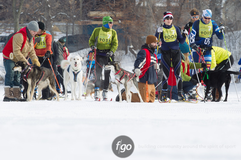 20130202 - 2013 Loppet-Chuck and Don's Skijoring-4417