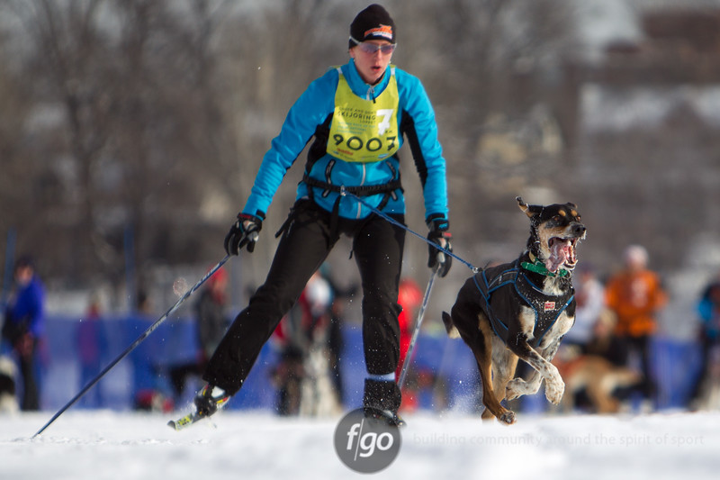20130202 - 2013 Loppet-Chuck and Don's Skijoring-0285