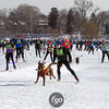 20130202 - 2013 Loppet-Chuck and Don's Skijoring-0363