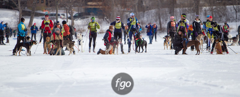 20130202 - 2013 Loppet-Chuck and Don's Skijoring-0210