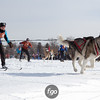 20130202 - 2013 Loppet-Chuck and Don's Skijoring-9953