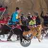 20130202 - 2013 Loppet-Chuck and Don's Skijoring-0228