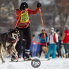 20130202 - 2013 Loppet-Chuck and Don's Skijoring-0329