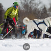 20130202 - 2013 Loppet-Chuck and Don's Skijoring-0342