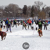 20130202 - 2013 Loppet-Chuck and Don's Skijoring-0359