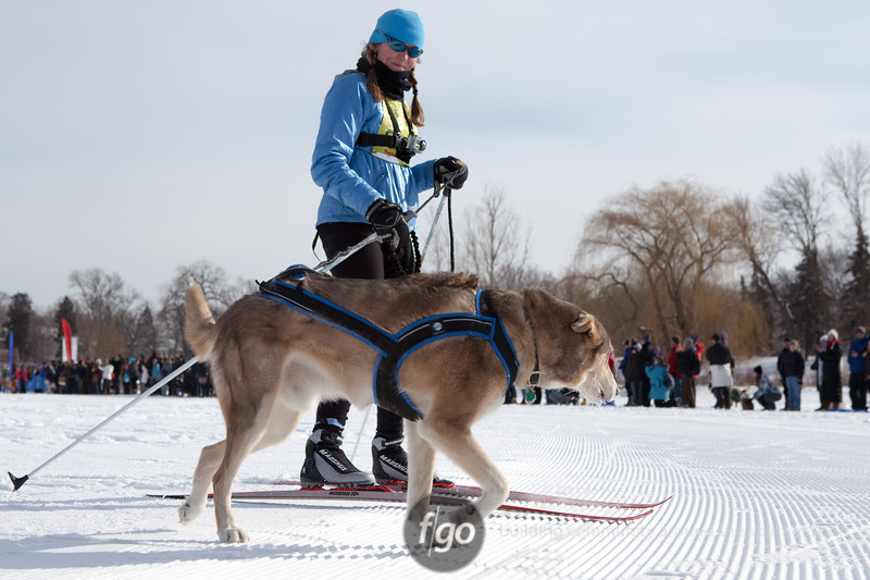 20130202 - 2013 Loppet-Chuck and Don's Skijoring-9944