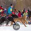 20130202 - 2013 Loppet-Chuck and Don's Skijoring-0227