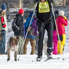20130202 - 2013 Loppet-Chuck and Don's Skijoring-4438