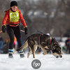 20130202 - 2013 Loppet-Chuck and Don's Skijoring-0333