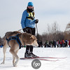 20130202 - 2013 Loppet-Chuck and Don's Skijoring-9943