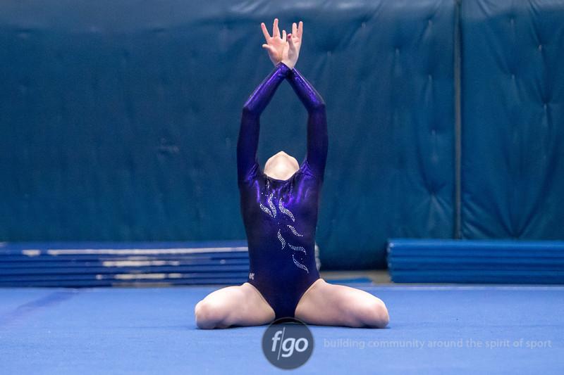 20141203-392-Mps-StP-Gymnastics
