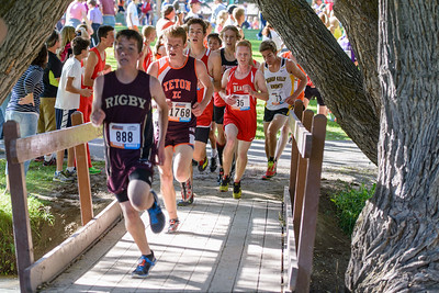 Tiger-Grizz Cross Country Meet - 2014