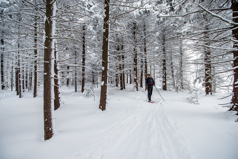 Cross Country Skiing_White Grass_Canaan Valley_West Virginia_photos by Gabe DeWitt_November 28, 2014-7
