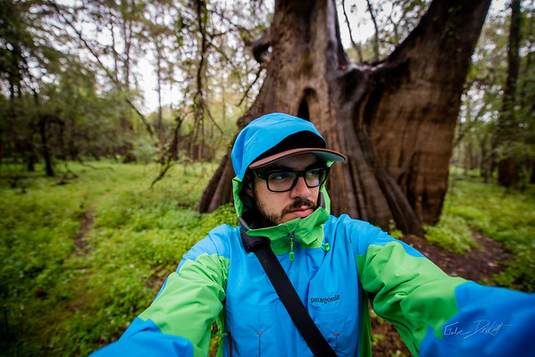 Cypress Trees_Cat Island_Louisiana_photo by Gabe DeWitt_November 05, 2014-83