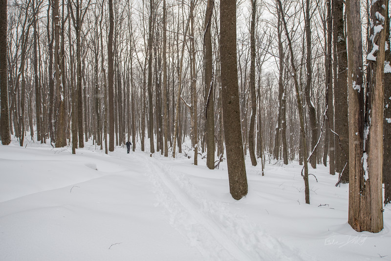 Cross-Country-Skiing-Coopers-Rock-WV-66