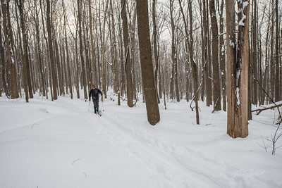 Cross-Country-Skiing-Coopers-Rock-WV-68
